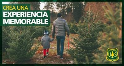 USDA FS anuncia que ya hay árboles de navidad disponibles