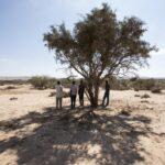 ACNUR advierte las deficiencias que amenazan la vida de las víctimas de trata por rutas de Sahel y África Oriental
